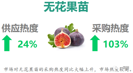 报告预测:明年种什么水果不愁卖