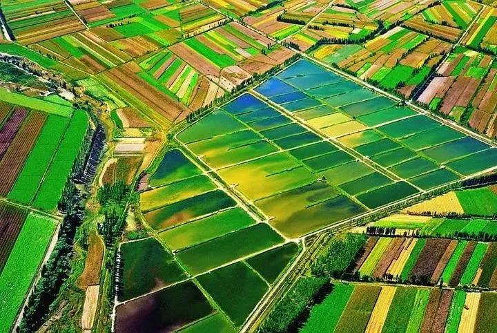 """制止耕地""""非农化"""",这几个部门要出手了!"""