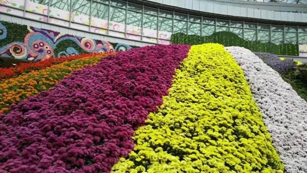 国家林业和草原局公布第二批国家花卉种质资源库名单
